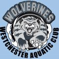 Westchester Aquatic Club Wolverines